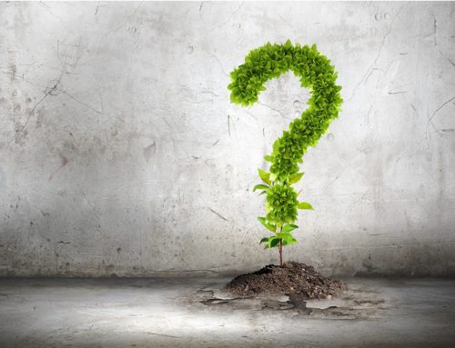 10 Questions to ask your Small Business Accountant