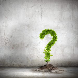 10 Questions to ask your Accountant